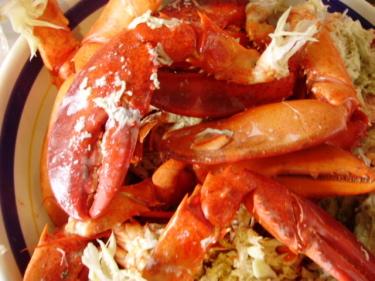 Lobster02b